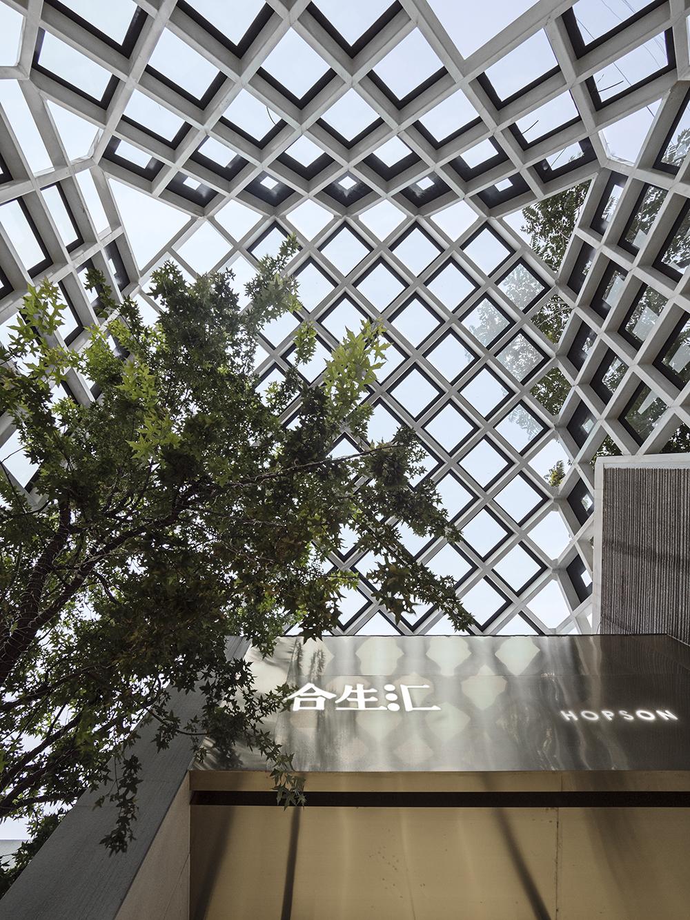 LATITUDE-HOPSON-SHOWROOM-19_roof